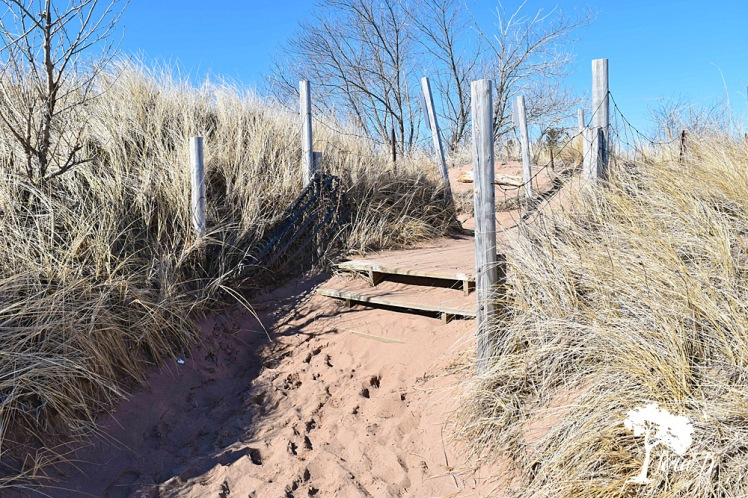 sandy path on Lake Superior beach