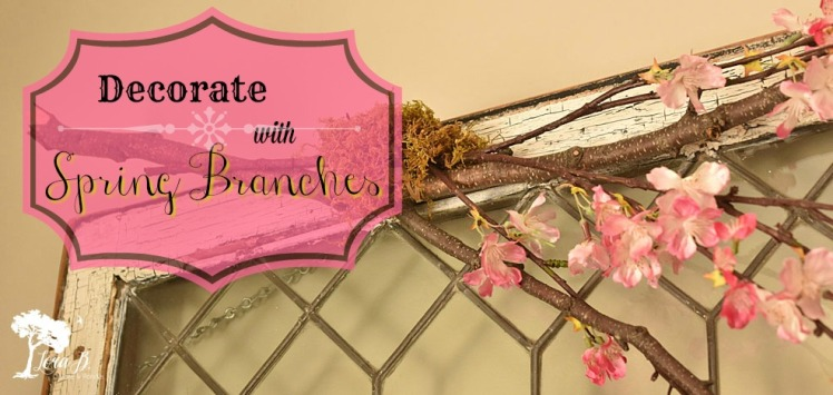 Apple Blossom Branch Decorating Vintage Window