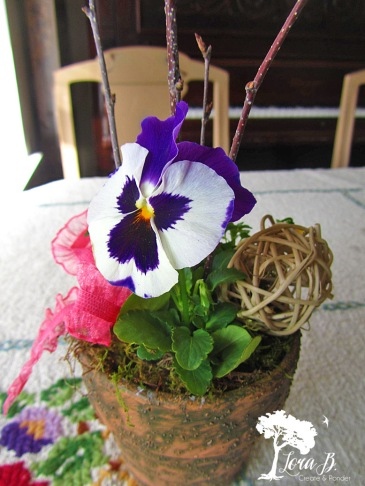 Pansy pot with added rattan sphere.
