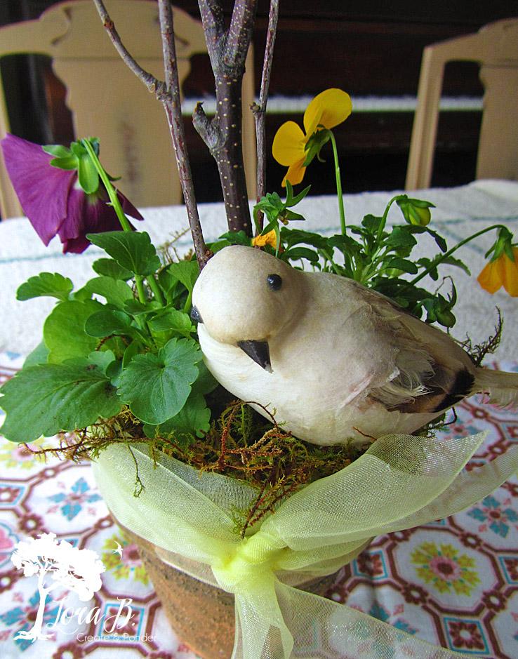 Bird in springtime pansy pot.