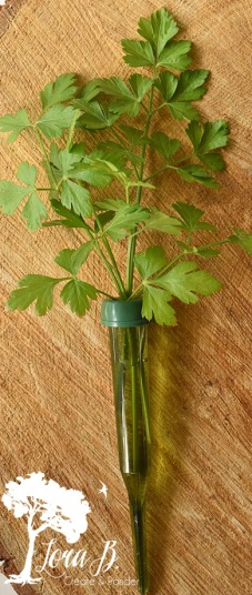 floral tube with parsley