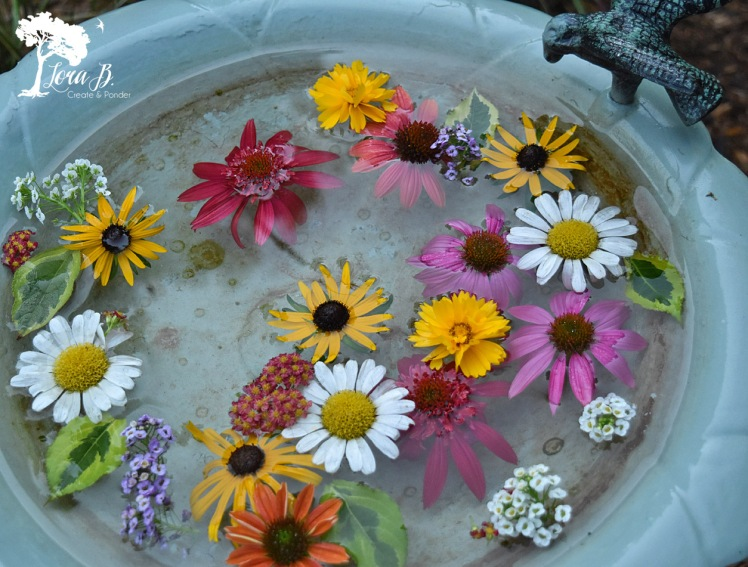 Flowers floating in birdbath